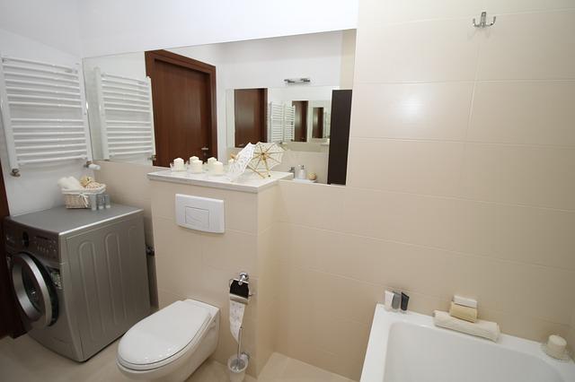 toilet-renovation